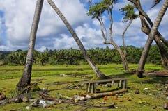 在狂放的海滩的一条长凳在伦敦德里 多米尼加海岛 图库摄影