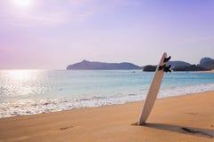在狂放的海滩的冲浪板 图库摄影