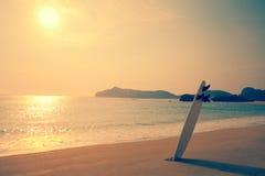 在狂放的海滩的冲浪板 免版税库存照片