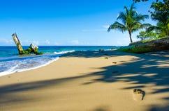 在狂放的海滩的脚印刷品在哥斯达黎加 库存照片