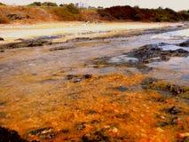 在狂放的秋天海滩的红色沙子 库存照片
