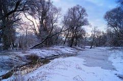 在狂放的自然的冬时 免版税库存图片
