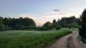 在狂放的自然的弯曲道路与在晚上 库存照片