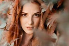 在狂放的葡萄的自然红头发人女孩秋天画象 免版税库存照片