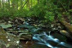 在狂放的水小河 库存图片