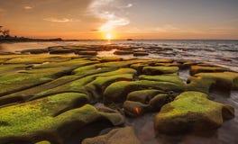 在独特的岩层和日落背景的绿色青苔 库存图片