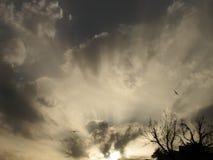 在猛冲的天空的日出 库存照片