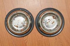 在猫以后的空的碗吃 免版税图库摄影