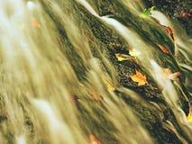 在玄武岩岩石的秋天瀑布 走路的小河和许多五颜六色的叶子在银行 免版税库存照片