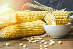 在玉米棒和甜玉米耳朵土气木桌背景的新鲜的玉米 库存照片