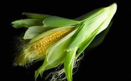 在玉米棒的新鲜的玉米在土气木桌上, 库存图片