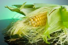 在玉米棒的新鲜的玉米在土气木桌上, 免版税图库摄影