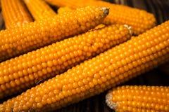 在玉米棒的玉米在木背景 免版税库存照片