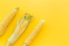 在玉米棒的玉米在黄色背景顶视图copyspace 免版税库存图片