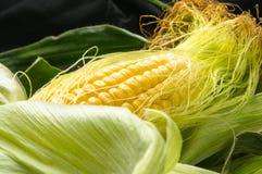 在玉米棒的玉米 免版税库存图片