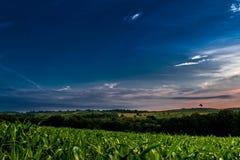 在玉米田的多云日出 库存图片