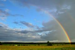 在玉米田的彩虹 免版税库存照片