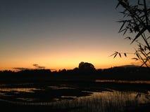 在玉米田稻田的晚上日落在#024 12月泰国 免版税库存图片