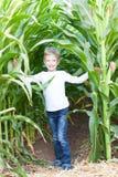 在玉米迷宫的孩子 免版税库存照片