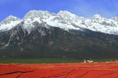 在玉龙雪山附近的旅行 库存照片