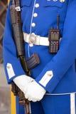 在王宫的皇家卫兵在斯德哥尔摩 库存照片
