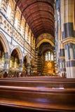 在玛丽s st里面的大教堂 免版税库存照片