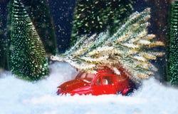 在玩具rad汽车的圣诞树 圣诞节假日庆祝从多雪的森林家庭,传统,假日的概念树 新年度 图库摄影