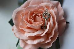 在玫瑰色芽的葡萄酒银色钥匙,葡萄酒减速火箭的样式,选择聚焦 免版税库存照片