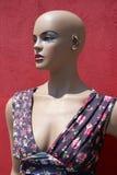 在玫瑰花礼服的时装模特 免版税库存图片
