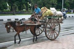 在环境主动性的印第安马购物车。 库存图片