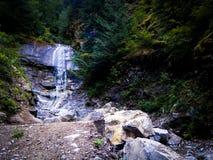 在环太平洋雨林的瀑布 免版税库存照片