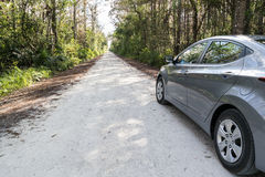 在环路的汽车在沼泽地,佛罗里达 库存图片