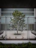 在现代大厦的树 免版税库存图片