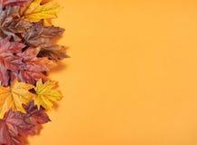 在现代趋向桔子背景的秋叶 库存照片