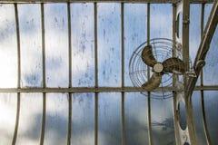 在玻璃屋顶的爱好者自温室 库存图片