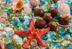在玻璃岩石和贝壳背景的块菌状巧克力 免版税库存照片