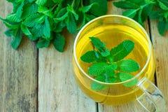 在玻璃杯绿色草本的新鲜Brewd草本薄荷的茶在板条木庭院表全部医学健康饮料戒毒所Ayurveda 免版税库存图片
