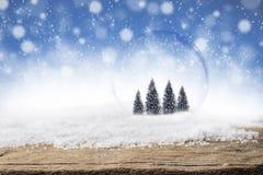 在玻璃泡影的杉树在圣诞节雪背景 免版税库存照片