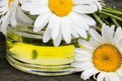 在玻璃瓶子特写镜头的春黄菊精油与雏菊 库存照片