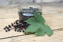 在玻璃瓶子的接骨木浆果果子 免版税库存照片