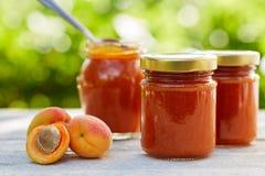 在玻璃瓶子的杏子果酱用新鲜水果 免版税库存照片
