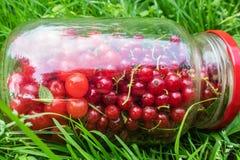 在玻璃瓶子的樱桃和无核小葡萄干莓果 库存图片