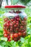 在玻璃瓶子的樱桃和无核小葡萄干莓果 免版税库存照片