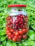 在玻璃瓶子的樱桃和无核小葡萄干莓果 免版税图库摄影