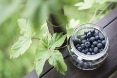 在玻璃瓶子的蓝莓在乡村模式的周围 图库摄影