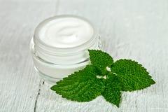 在玻璃瓶子的面霜与荨麻属绿色叶子  免版税库存图片