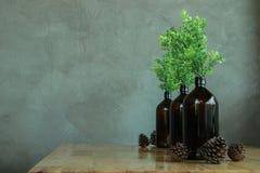 在玻璃瓶的人为树 库存图片