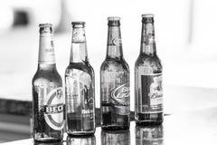 在玻璃瓶的啤酒在酒吧柜台 酒精,恶习 茶点,饮料,饮料 啤酒党,庆祝 免版税图库摄影