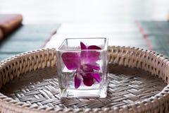在玻璃的兰花花 在席子的泰国后面架靠背枕头 泰国sc 免版税库存图片