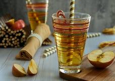 在玻璃的新鲜的苹果汁,秸杆,红色苹果 库存照片